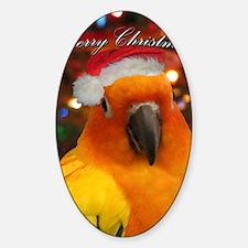 christmas_sunconure_cards Decal