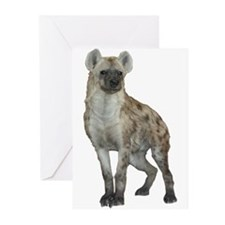 Hyena Greeting Cards (Pk of 10)