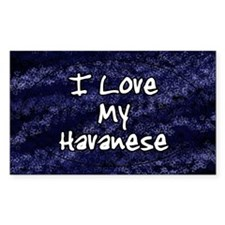 havanese_funklove_oval Decal