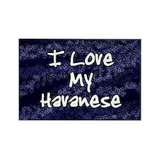 havanese_funklove_oval Rectangle Magnet