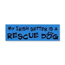 irishsetter_rescuedog Car Magnet 10 x 3