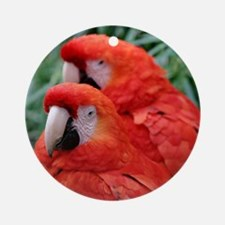 Red Scarlet Macaw Round Ornament