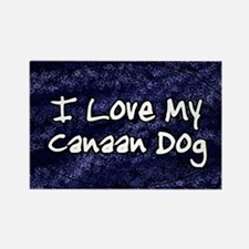 canaan_funkylove_oval Rectangle Magnet