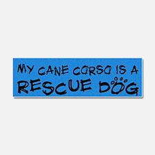 cane_rescuedog Car Magnet 10 x 3