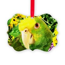 gonzo_garden_card Ornament