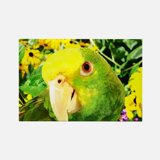gonzo_garden_poster Rectangle Magnet