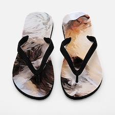 roofus_sleepy_poster Flip Flops