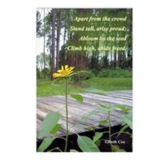 First Sunflower Freed of the Seed Postcards (Packa