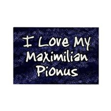 funklove_oval_maxipionus Rectangle Magnet