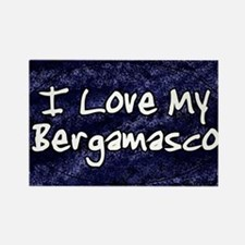 funklove_oval_bergamasco Rectangle Magnet