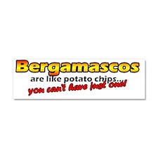 potatochips_bergamasco Car Magnet 10 x 3