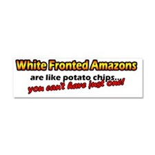 potatochips_whitefronted Car Magnet 10 x 3