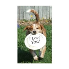 popper_iloveyou Decal