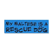 maltese_rescuedog Car Magnet 10 x 3