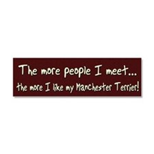 manchester_morepeople Car Magnet 10 x 3
