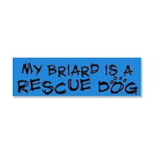 rescuedog_briard Car Magnet 10 x 3