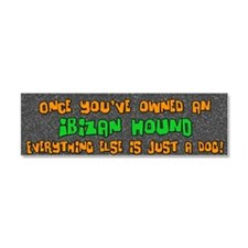 ibizan_everythingelse Car Magnet 10 x 3