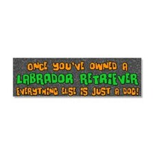 labrador_everythingelse Car Magnet 10 x 3