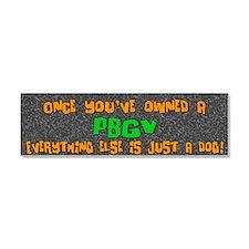 pbgv_everythingelse Car Magnet 10 x 3