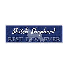 shiloh_bestdogever Car Magnet 10 x 3