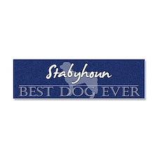 stabyhoun_bestdogever Car Magnet 10 x 3