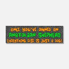everythingelse_anatolian Car Magnet 10 x 3