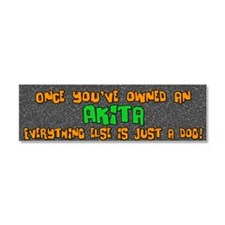 everythingelse_akita Car Magnet 10 x 3