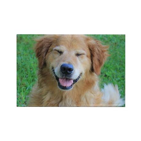 Golden Smile Rectangle Magnet