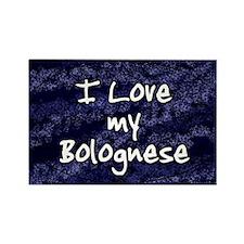 funklove_oval_bolognese Rectangle Magnet
