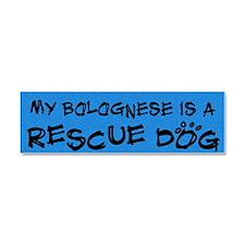 rescuedog_bolognese Car Magnet 10 x 3