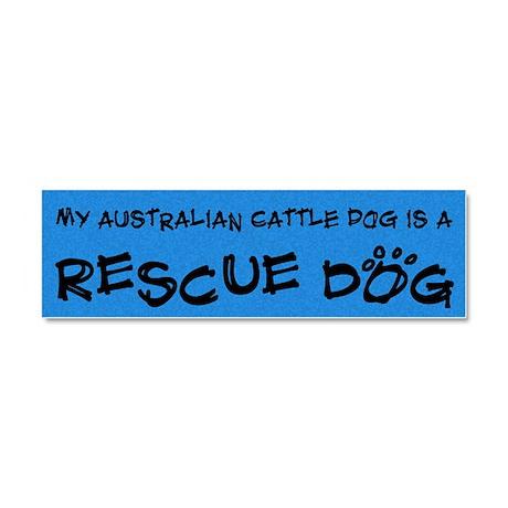 australiancattle_rescuedog Car Magnet 10 x 3