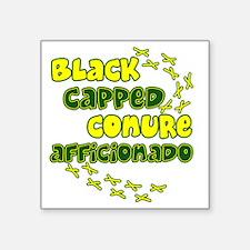 """afficionado_blackcap Square Sticker 3"""" x 3"""""""