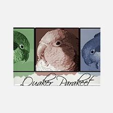colorrow_quaker Rectangle Magnet
