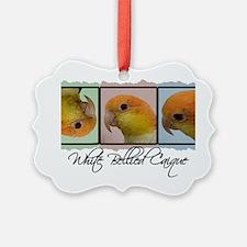 colorrow_whitebelly Ornament