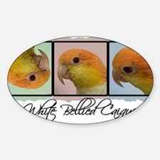 colorrow_whitebelly Decal