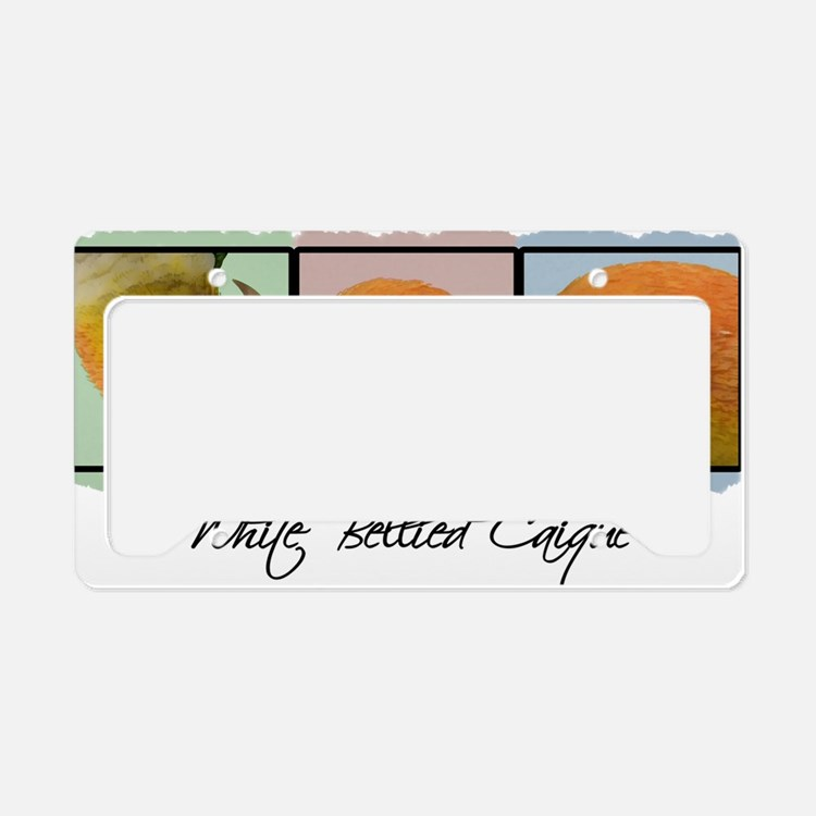 colorrow_whitebelly License Plate Holder