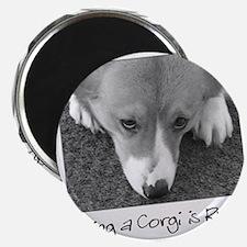 corgi_ruff_bowl Magnet