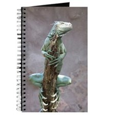 iguana_card Journal