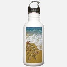 Christmas Seashells an Water Bottle