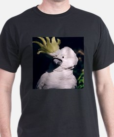 Greater Sulphur Crested T-Shirt