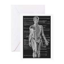 Human Anatomy Chart Greeting Card