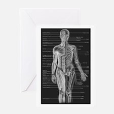 Human Anatomy Chart Greeting Card