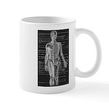 Human Anatomy Chart Small Mug