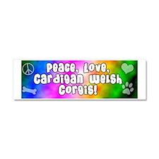 hippie_cardigan Car Magnet 10 x 3