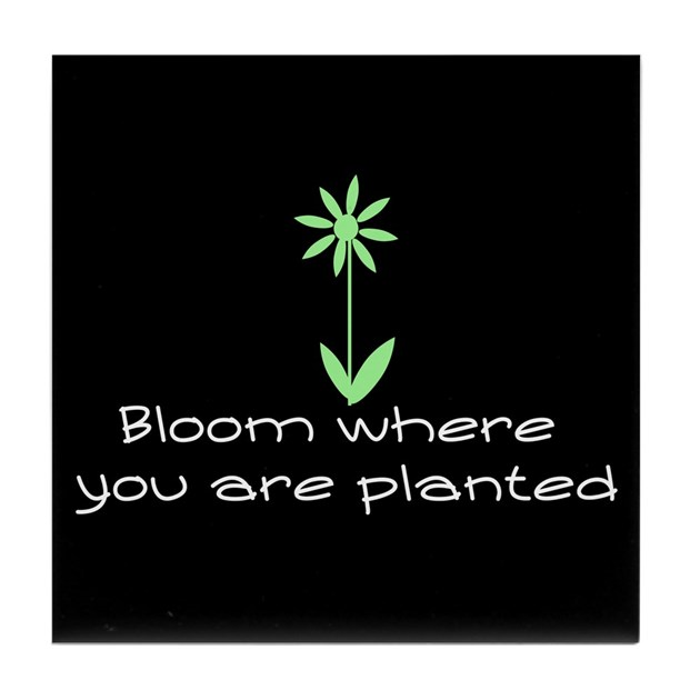 Bloom Where You Are Planted Tile Coaster By Omshanti1