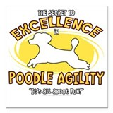 Agility poodle Square Car Magnets