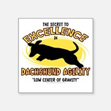 "dachshund_excellence Square Sticker 3"" x 3"""