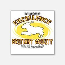 """brittany_excellence_blk Square Sticker 3"""" x 3"""""""