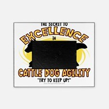 australiancattle_excellence Picture Frame