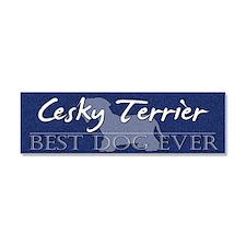 bestdog_cesky Car Magnet 10 x 3